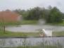 2009 regnvej