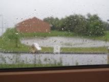 regnvejr (3)